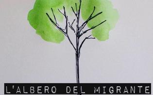 http://www.seguonews.it/martedi-al-ruggero-settimo-la-piantumazione-di-un-albero-per-ricordare-i-migranti-morti-nel-mediterraneo