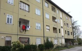 http://www.seguonews.it/detrazioni-fino-a-900-euro-per-gli-inquilini-degli-alloggi-sociali-iacp