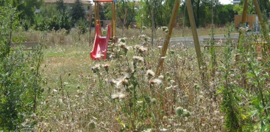 """Erbacce e rischio roghi a Caltanissetta, proposta dei Comitati di quartiere: """"Il Comune utilizzi gli operai Esa per la bonifica"""""""