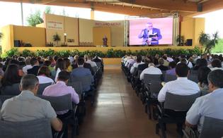 http://www.seguonews.it/imitiamo-gesu-migliaia-di-testimoni-di-geova-a-caltanissetta-sabato-il-battesimo-di-nuovi-fedeli