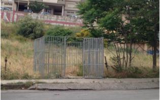 http://www.seguonews.it/gabbie-per-catturare-i-randagi-a-caltanissetta-green-italia-allattacco-azione-di-facciata-dellamministrazione