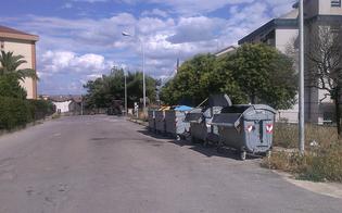 http://www.seguonews.it/caltanissetta-branco-di-randagi-aggerdisce-passante-al-quartiere-balate-la-vittima-finisce-in-ospedale