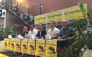 http://www.seguonews.it/rally-terre-del-platani-proseguono-i-preparativi-per-la-gara-dell11-luglio
