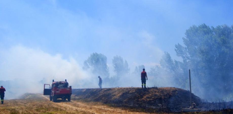 Brucia la collina del Redentore, arrivano i canadair. Paura tra i residenti: fiamme lambiscono le case