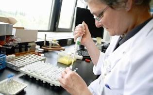 http://www.seguonews.it/epatite-c-lesperto-indica-i-criteri-per-accedere-alle-nuove-terapie