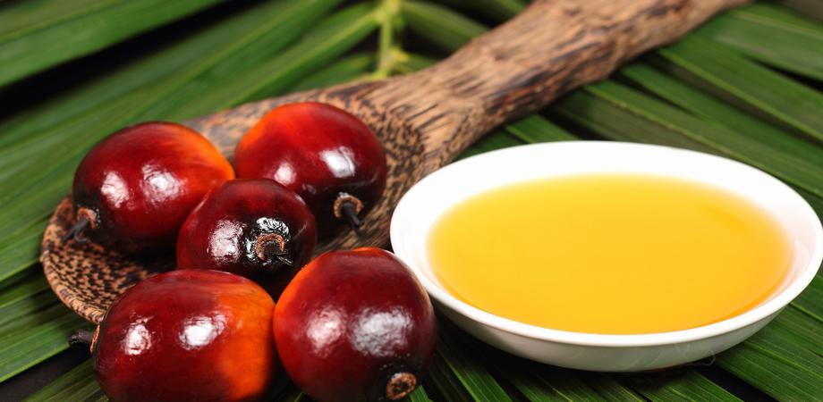 L'olio di palma fa veramente male? Il parere della nutrizionista