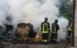 http://www.seguonews.it/vasto-rogo-in-fienile-tra-caltanissetta-e-san-cataldo-mobilitati-vigili-del-fuoco-e-mezzi-della-forestale