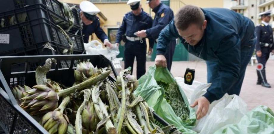 """Operazione """"Mangiare sicuro"""" a Caltanissetta, sequestrati 3 quintali di frutta e ortaggi senza tracciabilità. Sanzionato venditore ambulante"""
