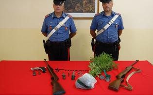 https://www.seguonews.it/il-fiuto-di-lillo-tra-le-case-del-bronx-a-gela-i-carabinieri-scovano-piante-di-marijuana-e-armi