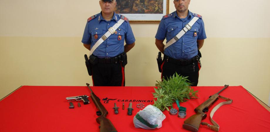 Il fiuto di Lillo tra le case del Bronx a Gela. I carabinieri scovano piante di marijuana e armi