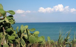 http://www.seguonews.it/istituita-il-20-ottobre-la-giornata-del-paesaggio-siciliano