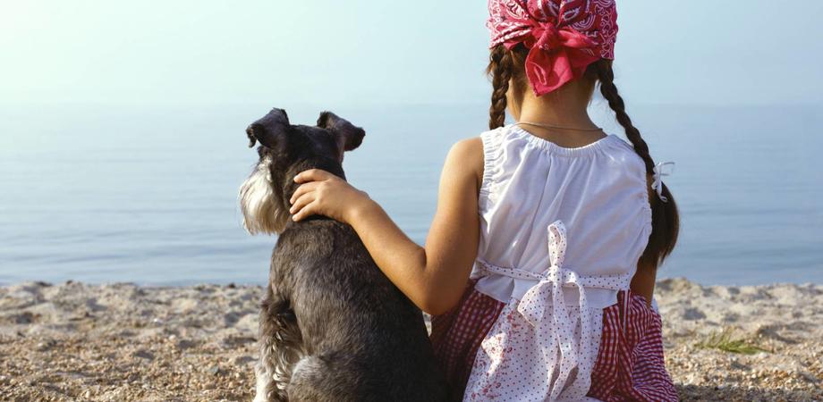 In vacanza con il cane o il gatto, ecco 78 luoghi da visitare insieme. Tra le mete anche il quartiere arabo di Sutera