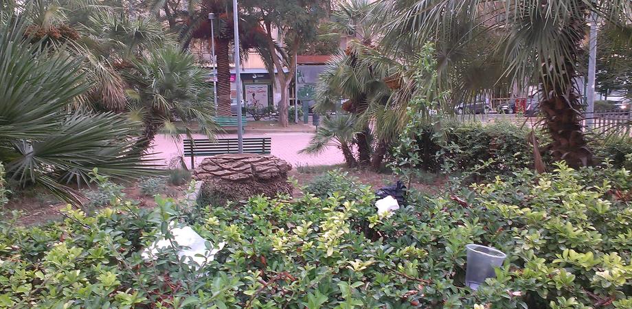 """Caltanissetta. Le foto dei lettori: i rifiuti """"crescono"""" tra i cespugli, piazza della Repubblica """"terra di nessuno"""""""