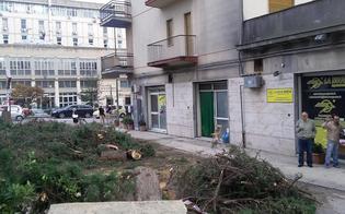 http://www.seguonews.it/il-day-after-del-maltempo-a-caltanissetta-no-stop-dei-vigili-del-fuoco-il-comune-pronto-a-chiedere-il-risarcimento-danni