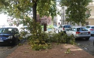 http://www.seguonews.it/nubifragio-a-caltanissetta-e-pioggia-di-polemiche-lega-nissena-perche-il-sindaco-non-ha-dato-lallerta-meteo