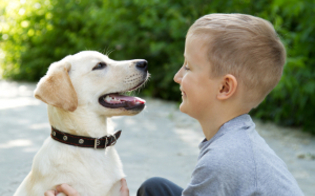 http://www.seguonews.it/con-gli-animali-leducazione-prima-di-tutto