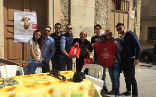 http://www.seguonews.it/deliattiva-e-aism-in-piazza-bancheri-buona-la-risposta-dei-cittadini