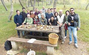 https://www.seguonews.it/a-san-cataldo-un-corso-del-wwf-che-insegna-a-raccogliere-i-funghi