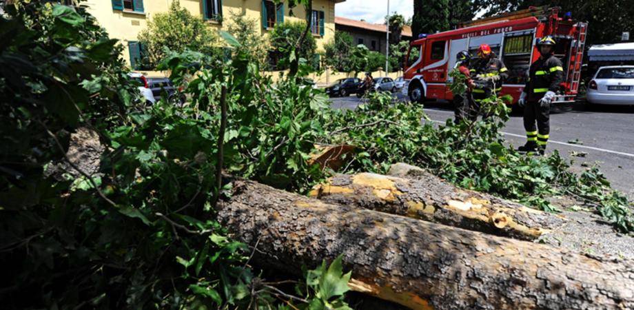 Tromba d'aria a Caltanissetta, oltre 150 interventi per i vigili del fuoco: in via Firenze crolla un tetto, passante ferito