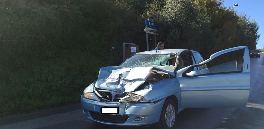 """Caltanissetta. Auto """"slitta"""" sull'asfalto e tampona camion, cinque feriti ricoverati all'ospedale """"Sant'Elia"""""""