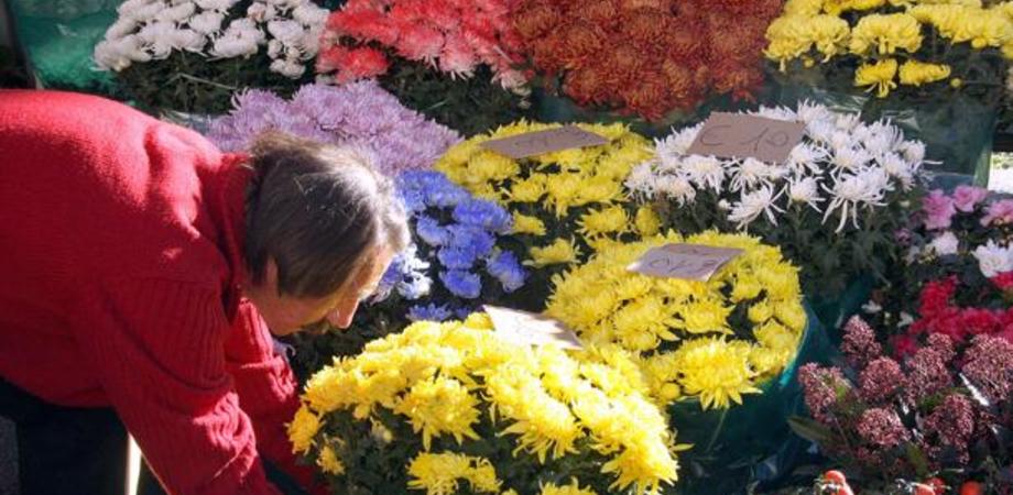 """Ognissanti, i consigli di Coldiretti sui prezzi dei fiori. """"Non fate acquisti di impulso"""". Tre su quattro andranno al cimitero"""