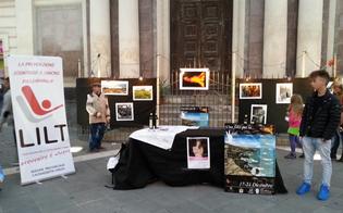 http://www.seguonews.it/prevenzione-dai-tumori-a-dicembre-lions-club-e-lidt-insieme-per-una-mostra-fotografica