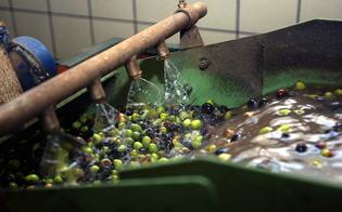 http://www.seguonews.it/smaltimento-irregolare-sequestrato-frantoio-a-caltanissetta-giro-di-vite-contro-linquinamento-ambientale