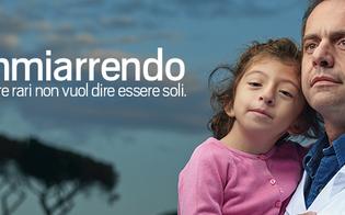 http://www.seguonews.it/nonmiarrendo-lions-caltanissetta-dei-castelli-inaugura-mostra-a-serradifalco-per-raccolta-fondi