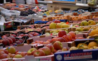 http://www.seguonews.it/ortofrutta-e-articoli-casalinghi-esposti-sul-suolo-pubblico-a-caltanissetta-multati-due-commercianti
