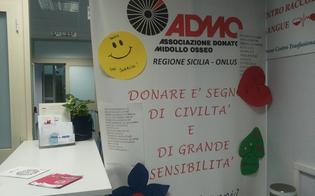 http://www.seguonews.it/diventare-donatori-di-midollo-osseo-sabato-al-s-elia-una-giornata-dedicata-ai-prelievi
