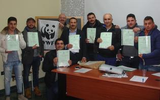 http://www.seguonews.it/guardie-eco-zoofile-wwf-arruolati-venti-volontari-a-san-cataldo-vigileremo-sulla-tutela-degli-animali-e-della-natura