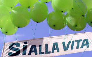 http://www.seguonews.it/giornata-della-vita-a-caltanissetta-offerte-primule-per-aiutare-le-madri-in-difficolta