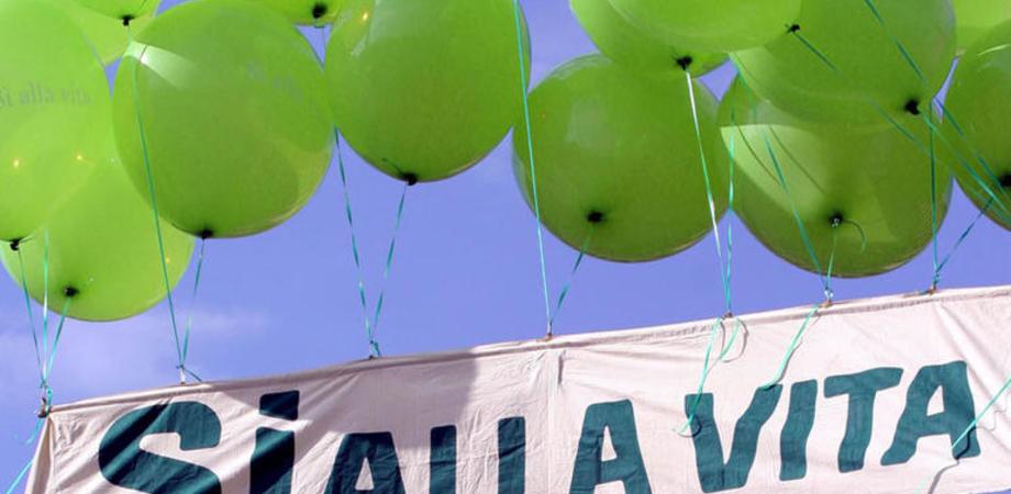 Giornata della Vita, a Caltanissetta offerte primule per aiutare le madri in difficoltà