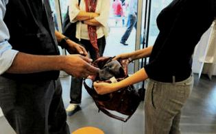 http://www.seguonews.it/caltanissetta-rubano-shampoo-e-deodoranti-dagli-scaffali-due-ragazze-denunciate-dalla-polizia