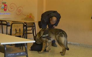 http://www.seguonews.it/cane-poliziotto-trova-droga-in-una-scuola-a-caltanissetta-hashish-nascosto-dietro-un-termosifone