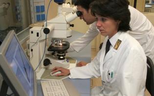 http://www.seguonews.it/crimini-al-microscopio-paola-di-simone-racconta-il-suo-libro-a-caltanissetta