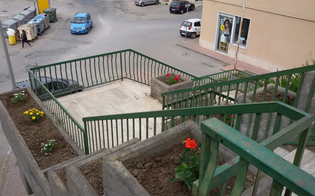 http://www.seguonews.it/san-luca-scalinata-ripulita-da-residenti-e-commercianti-piantati-fiori-e-rimosse-le-erbacce