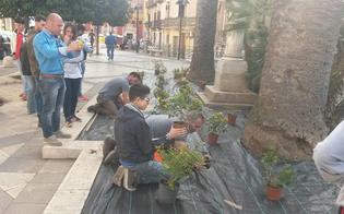 http://www.seguonews.it/prove-antidegrado-in-piazza-tripisciano-studenti-dellagrario-piantano-i-fiori