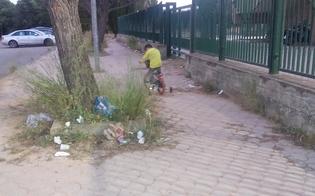 http://www.seguonews.it/rifiuti-e-sterpaglie-dribbling-nel-degrado-alla-cittadella-sportiva-di-pian-del-lago
