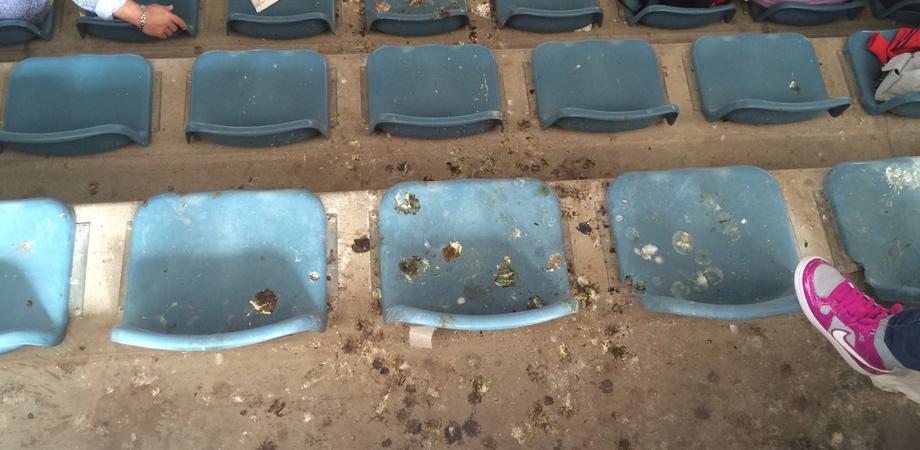 Festa dello Sport, al PalaCanizzaro sedili imbrattati da escrementi. Il degrado negli impianti di Pian del Lago