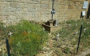 http://www.seguonews.it/cronache-di-un-degrado-mattarella-e-andato-via-dimenticato-il-cimitero-dei-carusi-a-gessolungo