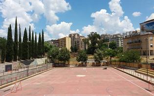 http://www.seguonews.it/caltanissetta-sabato-riapre-lex-pista-di-pattinaggio-il-programma-della-giornata