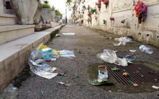 http://www.seguonews.it/cimitero-angeli-sempre-piu-sporco-la-rabbia-dei-parenti-dei-defunti-e-ce-chi-si-organizza-per-ripulire