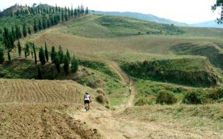 http://www.seguonews.it/il-cammino-dei-branciforti-itinerari-culturali-nel-nisseno-siglata-intesa-alla-cciaa-per-rilanciare-il-turismo