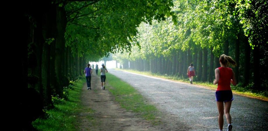 Corsa e benessere, gli esperti: un'ora di movimento al giorno contro i danni di 8 ore seduti