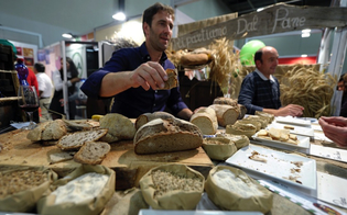 http://www.seguonews.it/salone-del-gusto-torino-vetrina-per-10-aziende-nissene-bando-della-ccia-per-partecipare