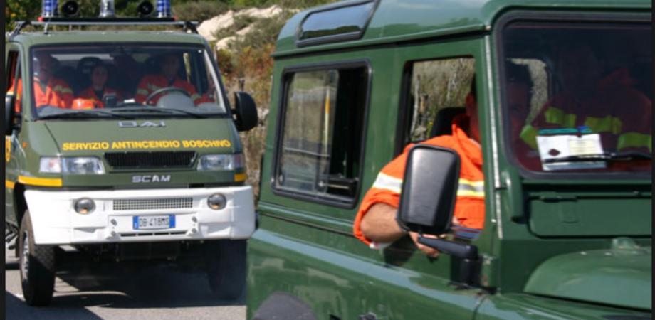 Stipendi in ritardo, a Caltanissetta protestano i forestali. Il 18 agosto presidio davanti l'Ispettorato