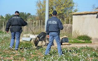 http://www.seguonews.it/anziano-scomparso-a-caltanissetta-si-perlustrano-le-campagne-ore-di-ansia-per-i-familiari-di-andrea-gallo