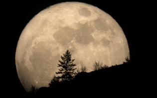 Occhi puntati al cielo lunedì 14 per la luna più grande e luminosa degli ultimi 68 anni