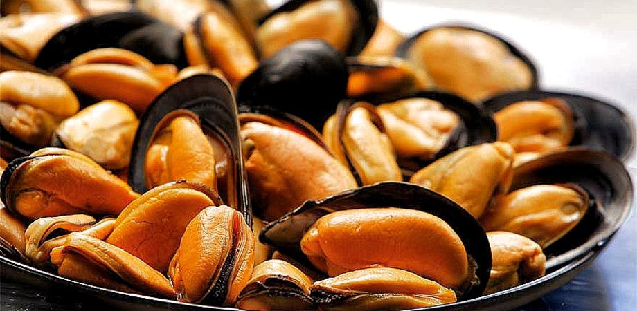 Cozze mediterranee dalla Spagna, confezionate in Italia, contaminate con salmonella